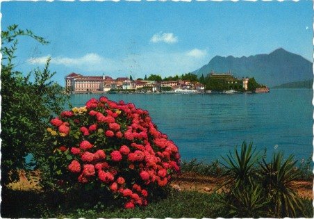 Postcard Italy 1980s Postcard