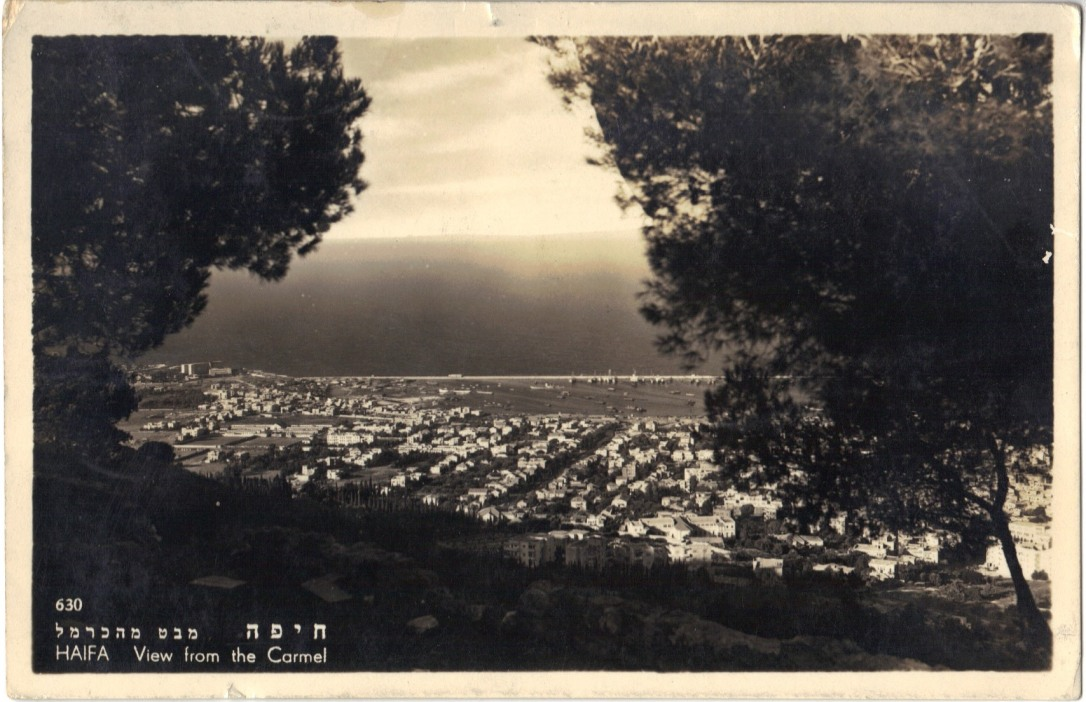 View from the Carmel, Vintage Postcard - Israel 1950